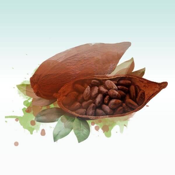 hol dir schmelzige kakaobohne