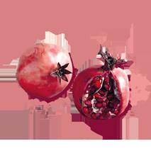 shuyao_zutat_fruechte_granatapfel_web_213x213