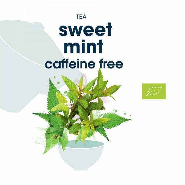 133. sweet bio mint tea in blattqualität