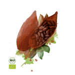 kakaobohne-150x150