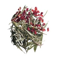 130. bamboo berry tee früchte tee