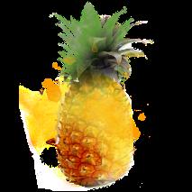 ananas-213x213