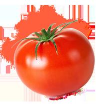 tomaten pulver