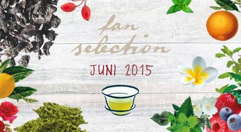 blog_fanselection_juni