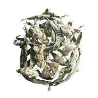 137. peloponnes tee kräutertee