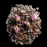 cacao rose