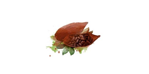 kakaobohne statt schokolade