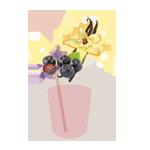 aronia vanilla shake