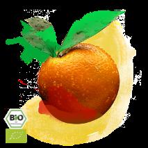 orangenschale-213x213