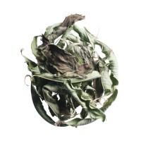 133. sweet bio mint tea - pfefferminztee