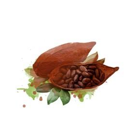 erfrischende minze meets kakao
