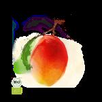mango-150x150